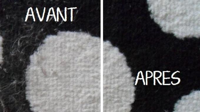 une astuce insolite pour enlever les poils de chat sur les v tements facilement. Black Bedroom Furniture Sets. Home Design Ideas