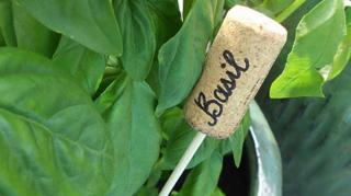 etiquettes jardin potager