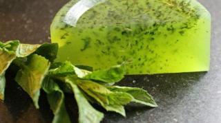 fabriquer savon maison herbes citron
