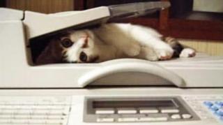 fax gratuit internet