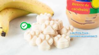friandise pour chien beurre cacahuète
