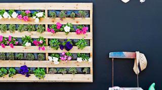 idee-originale-recycler-palettes-pour-deco-et-meubles