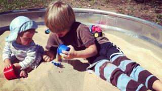 insectes bac à sable