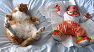 lit bébé appoint