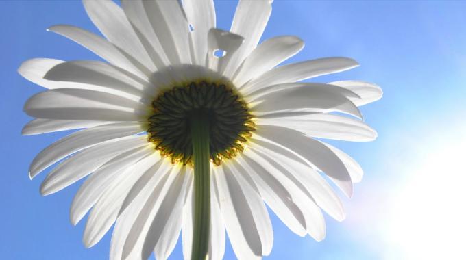 Fatigue Hivernale : 11 Astuces Pour Garder la Forme Tout l'Hiver.