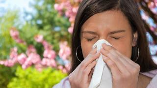 lutter allergie maison