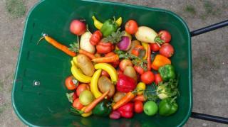 miam les bons legumes