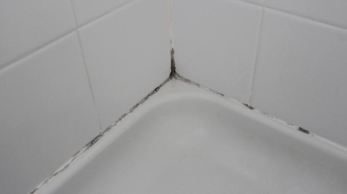 LAstuce Qui Marche Pour Enlever La Moisissure Des Joints De - Enlever moisissure salle de bain