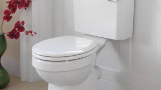 nettoyant-maison WC