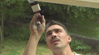 oignon-proteger-fenetres-peinture