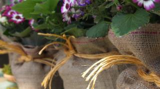 pots fleurs pas chers exterieurs
