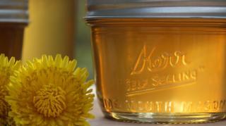 recette-maison-miel-pissenlit