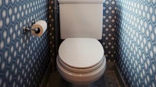 toilettes désinfectés sans javel