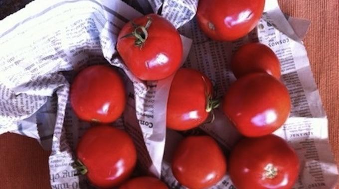 Le P'tit Truc Pour Faire Mûrir Vos Tomates Plus Rapidement.