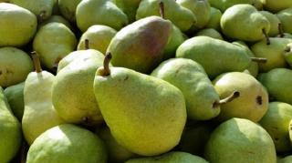 truc murir poire rapidement pomme