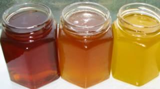 vertus et bienfaits des différents miels
