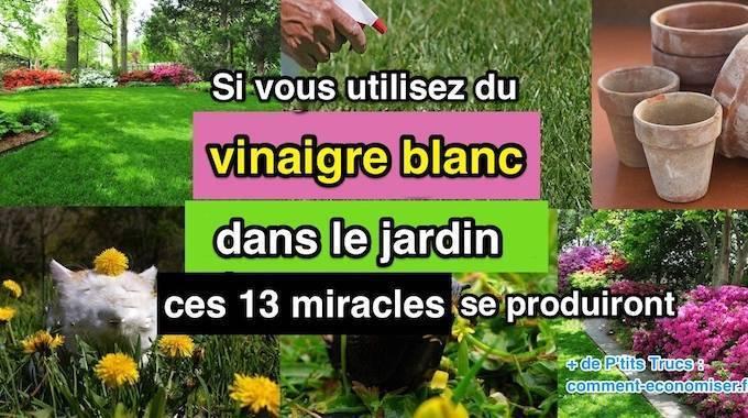si vous utilisez du vinaigre blanc dans le jardin ces 13 miracles se produiront. Black Bedroom Furniture Sets. Home Design Ideas