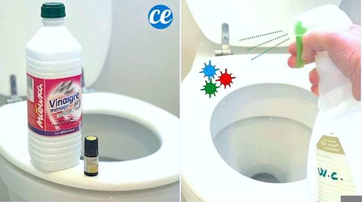 Nettoyer Lunette Toilettes Vinaigre Blanc coronavirus : comment désinfecter les wc avec du vinaigre blanc.
