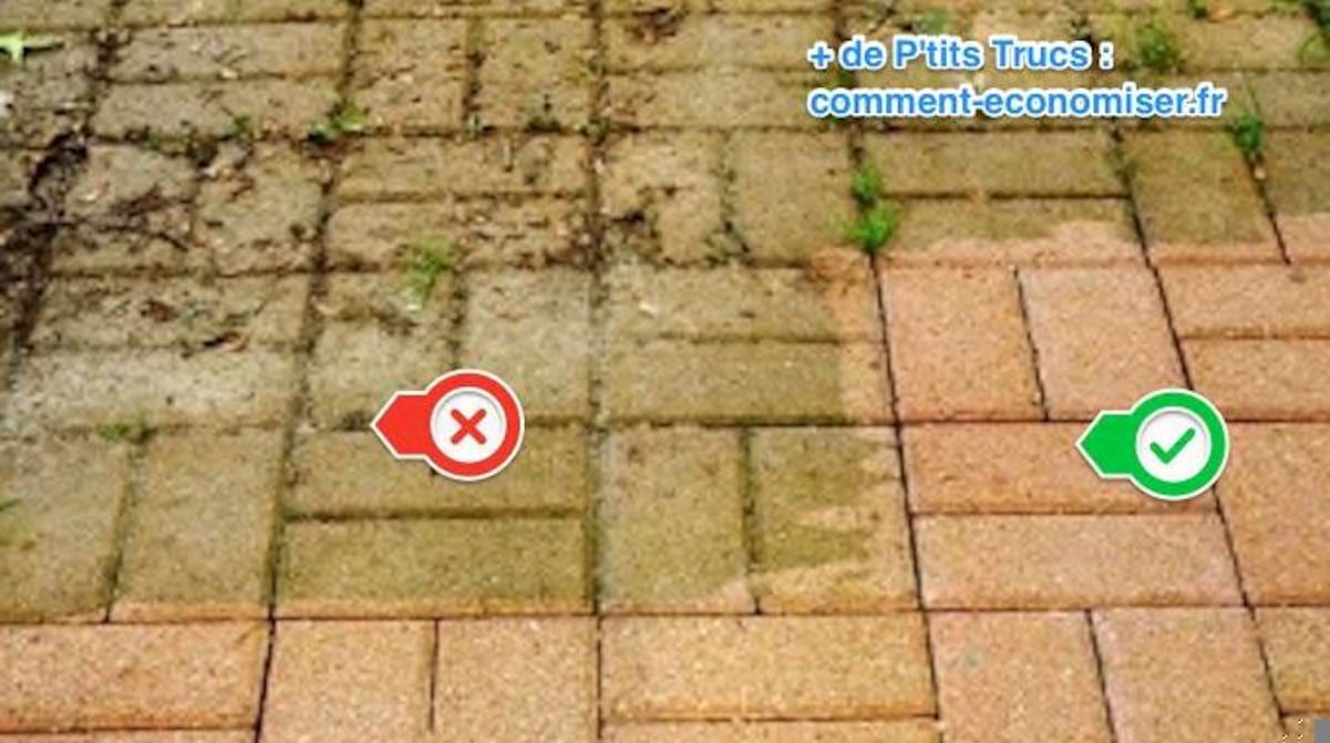 Comment Enlever Ciment Sur Pavés 2 astuces pour enlever la mousse sur la terrasse (révélées